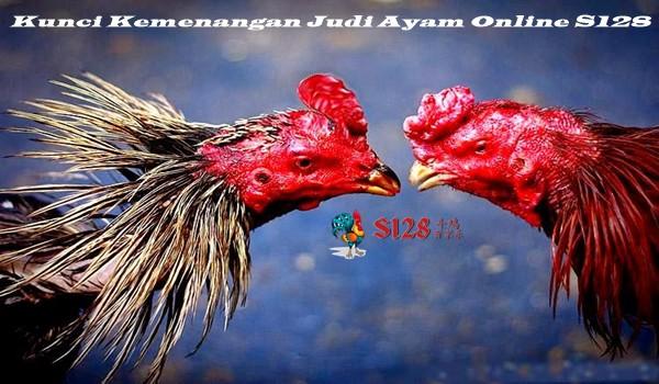 Kunci Kemenangan Judi Ayam Online S128